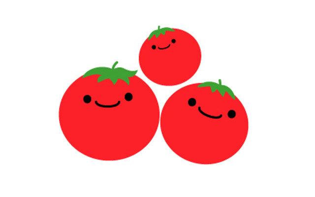 トマトはどのくらい日持ちするの?賞味期限、保存方法が知りたい!