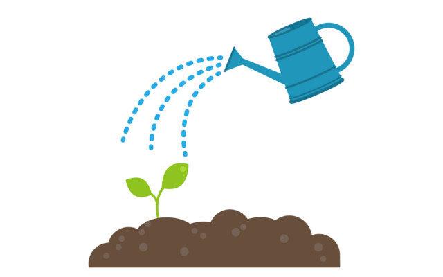 ハーブを自分で育てたい!初心者向け、簡単栽培ガイド。