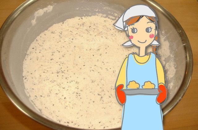 ドライイーストと天然酵母で味の違いはでるの?置き換えはできる?