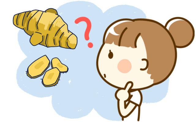 生姜の「ひとかけ」、量や重さはどれくらい?生姜チューブなら何センチ出せばいいの?
