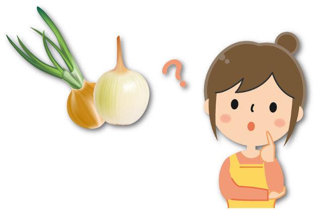 玉ねぎの芽って毒があるの?食べない方が良い?