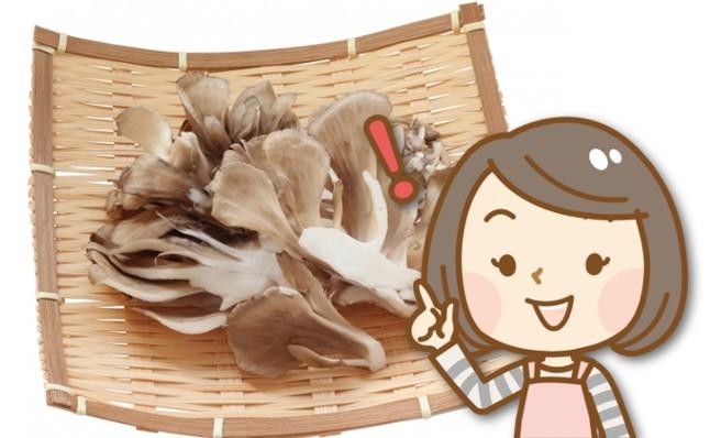 舞茸の日持ちはどれくらい?賞味期限や保存方法を教えて!