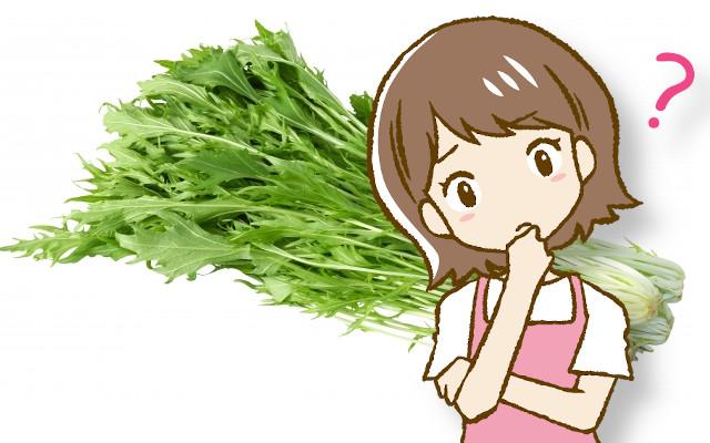 水菜は生でも食べられるの?おいしい食べ方はあるの?