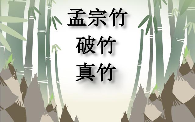 筍の孟宗竹、破竹、真竹の違いは何?