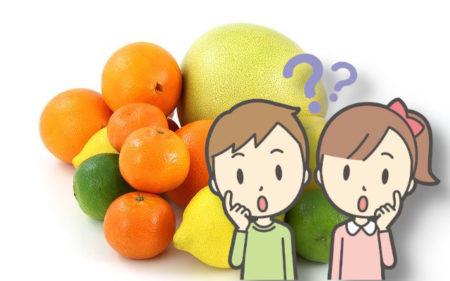 八朔、甘夏、夏みかん、だいだい、ぽんかん、どう違うの?柑橘類の違いを教えて!