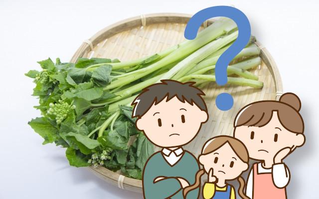 花わさび、葉わさび、茎わさび、わさび菜、違いは何?