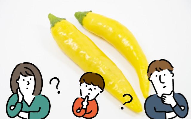 黄色い唐辛子「黄唐辛子」があるって本当?どこで売ってるの?辛さはどれくらい?
